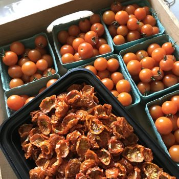 dried Sungold cherry tomatoes