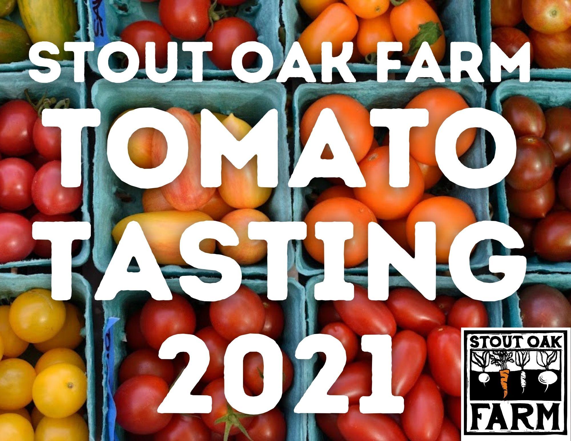Stout Oak Farm Tomato Tasting 2021